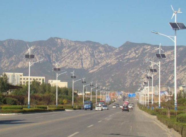 Application of 8M 56W LED Wind Solar Hybrid Street Light (1).jpg